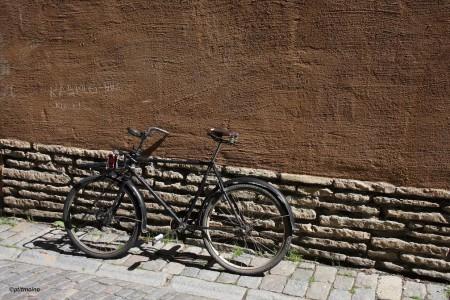 5-vélo